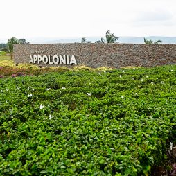 Green Appolonia City Entrance